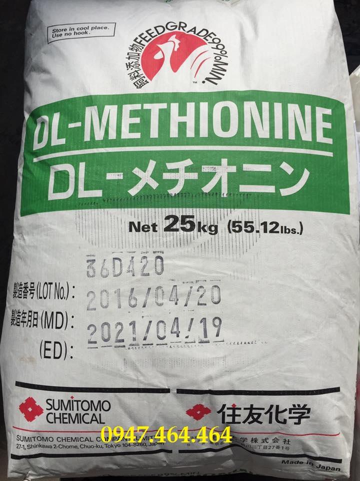dl-methionine31323