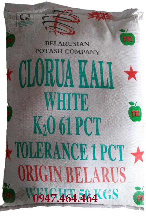 kcltrangnga651