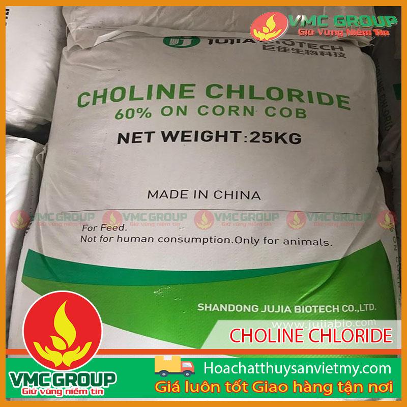 CHOLINE CHLORIDE 60% ON CORN COB( VITAMIN B4)- PHỤ GIA CHO THỨC ĂN CHO CHĂN NUÔI, THỦY SẢN